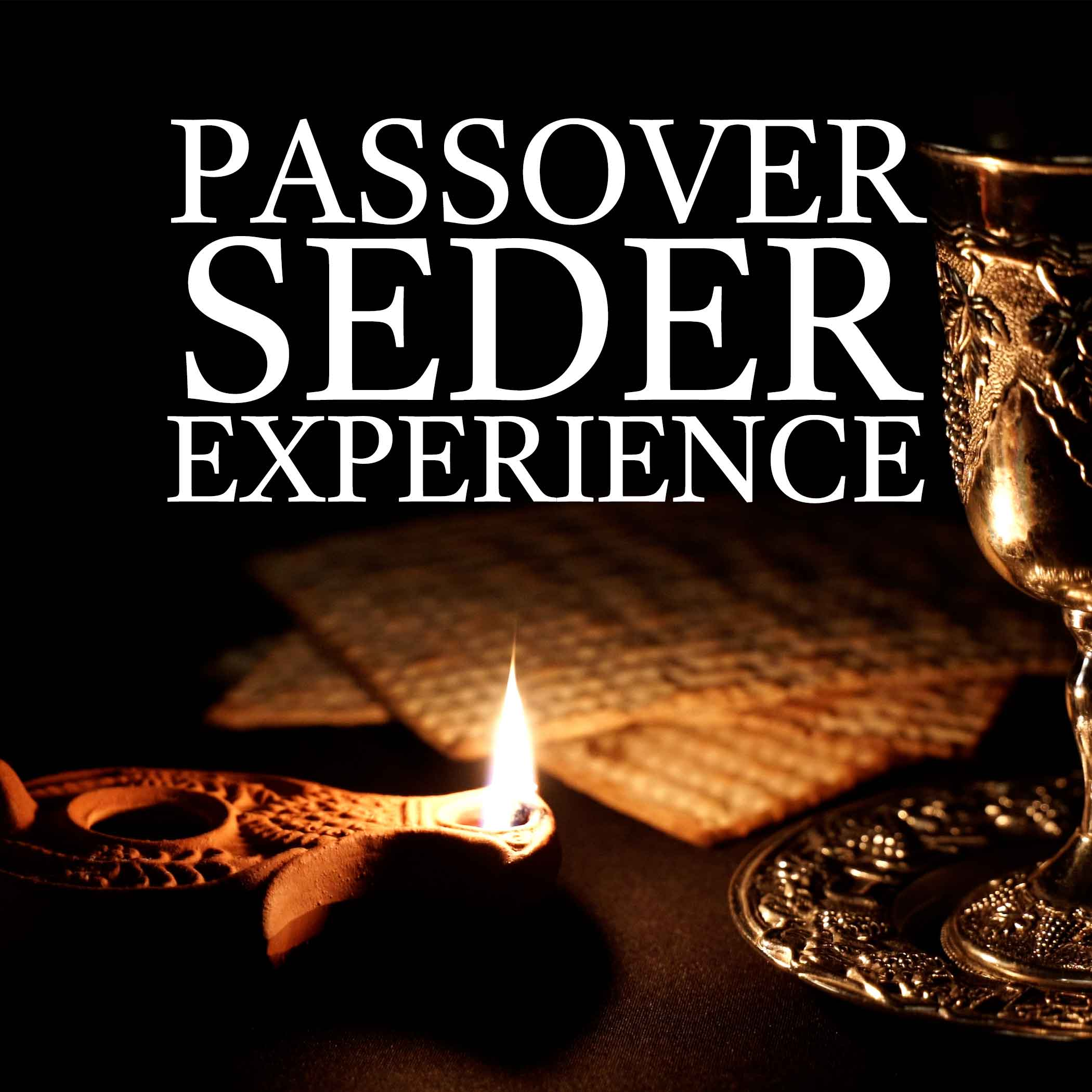 passover seder experience